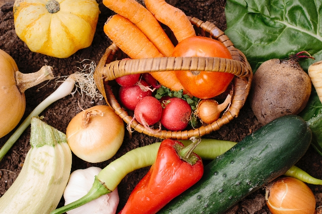 梅雨のカビ対策。冷蔵庫の野菜庫が危険!?